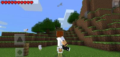 Мод NAMETAGPE для Minecraft PE 0.9.5