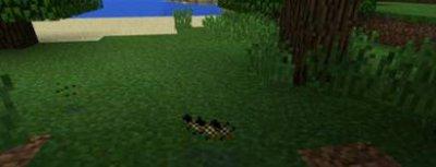 Мод Honey — медовый для Minecraft PE 0.10.5