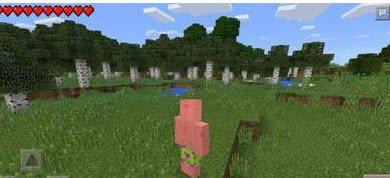 Мод Look Face (Selfie ) для Minecraft PE 0.11.1