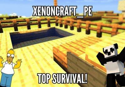 Сервер XenonCraft [0.12.х]